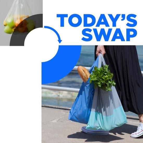 Swap_shop_bags